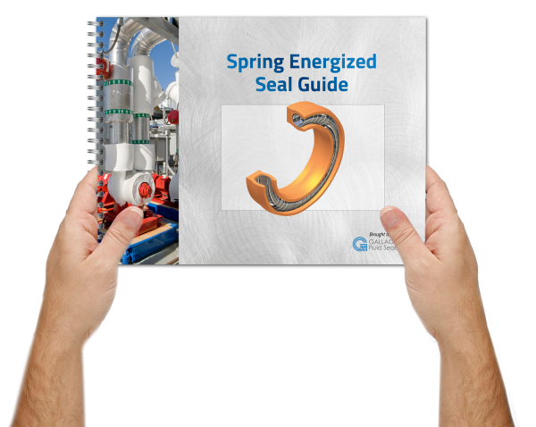 Spring Energized Seal Guide
