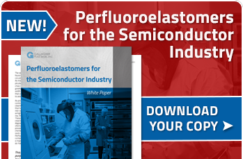 Download Perfluoroelastomers for the Semiconductor Industry White Paper