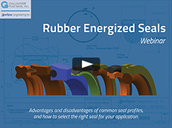 Rubber Energized Seals Title Page Resources