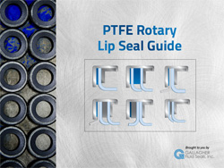lip seal guide