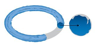 O-Ring Extrusion & Nibbling