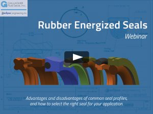 Rubber Energized Seals